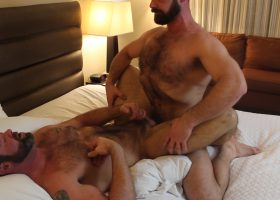 Bears Breed and Shower